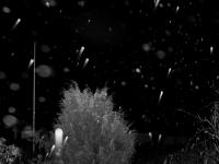 regn-4.jpg